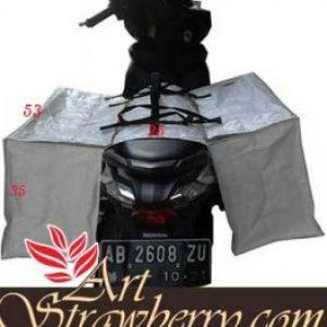 Tas motor Bagor (klik gambar)